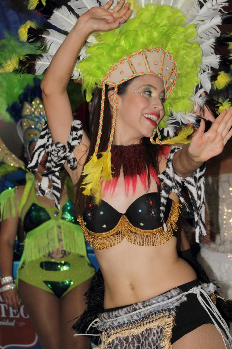 Expresiones Artísticas - Carnaval de Brasil - La Jarana