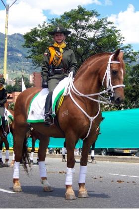 Feria de las Flores - Desfile a Caballo - Medellín - Colombia